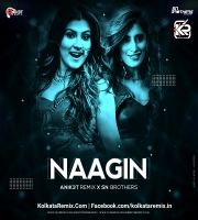 Nagin (Remix) - SN Brothers And Anik3t Remix