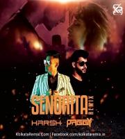 Senorita Remix - DJ Harsh Mahant And DJ Paggy