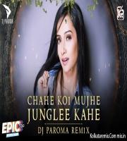Chahe Koi Mujhe Junglee Kahe (Remix) - DJ PAROMA