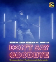 Don't Say Goodbye - (feat. Tove Lo) - Alok X Ilkay Sencan