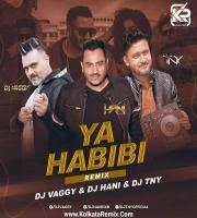 Ya Habibi (Remix) - Dj Vaggy , Dj Hani , Dj TNY