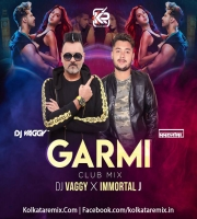 Garmi (Club Mix) - DJ Vaggy And Immortal J